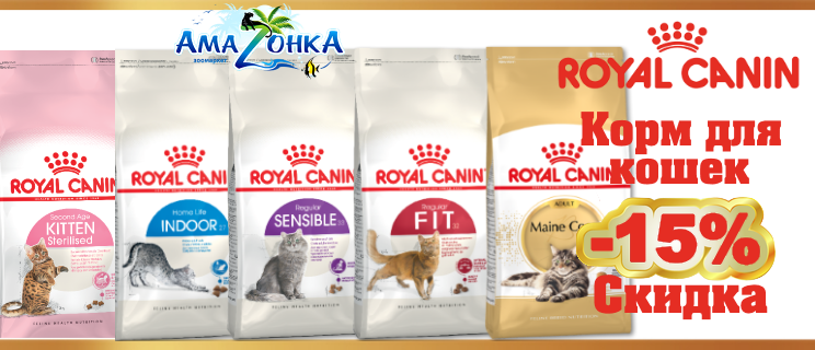 акция на корма Royal Canin для кошек